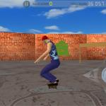 Skate Maze