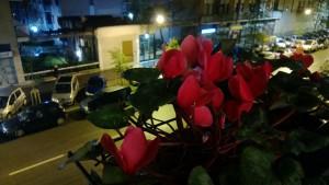 Nokia Lumia 920 - Scatto di notte in Automatico