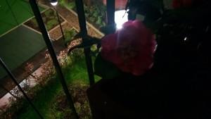Nokia Lumia 920 - Scatto in Scena Notte