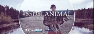 #55DSLANIMAL PhotoContest