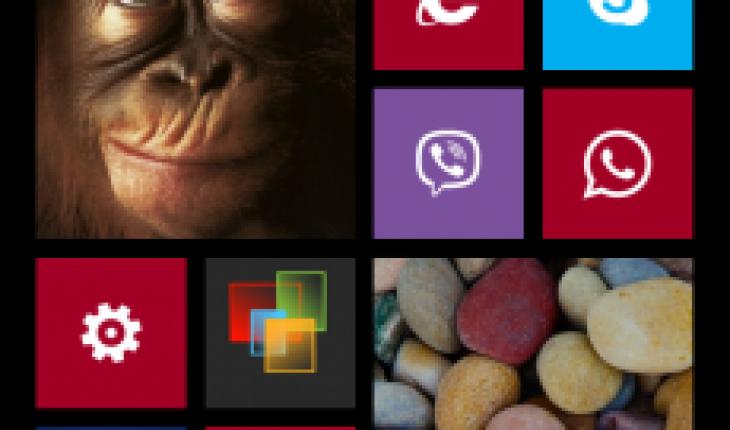 StartScreen WP8