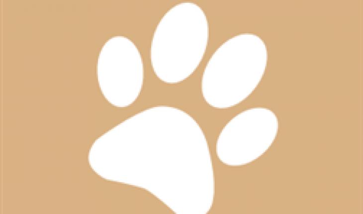 Tutto sul Cane logo