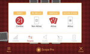 Scopa Pro