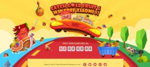 Catch Gold Fruit